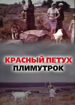 Трейлер: Красный петух плимутрок