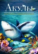 Акулы: Властелины подводного мира