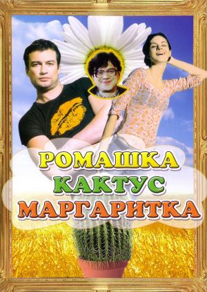 Ромашка, кактус, маргаритка